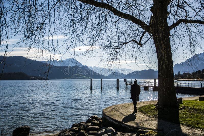 Vue fascinante de lac lucerne en Suisse image libre de droits