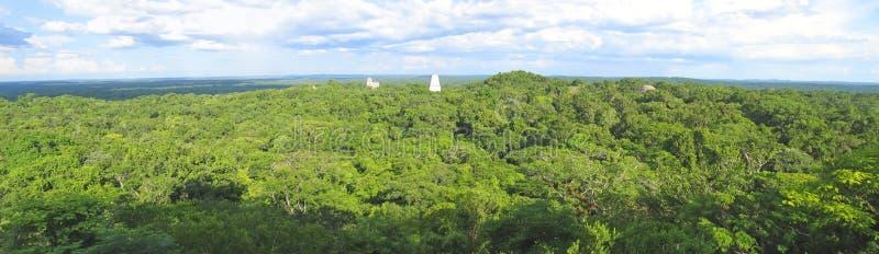 Vue gentille au-dessus des ruines de Maya image libre de droits