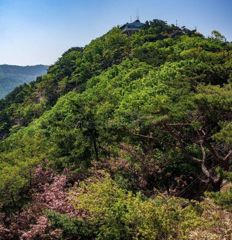 Vue gentille de panorama sur la colline avec la maison images libres de droits