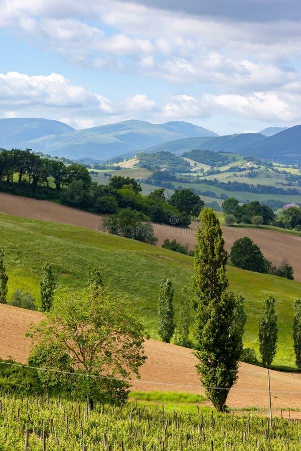 Vue gentille en Italie Marche près de Camerino images libres de droits