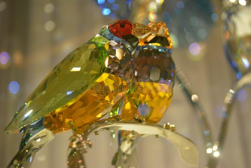 Vue haute étroite de l'oiseau en cristal photos libres de droits