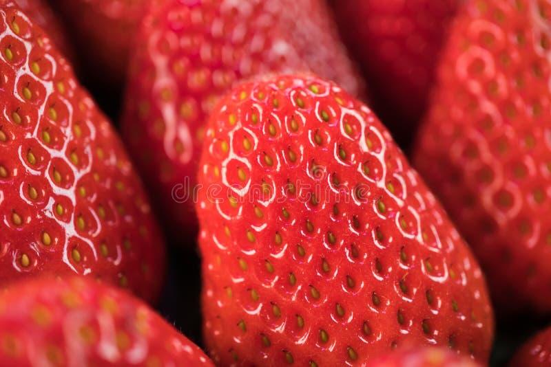 Vue haute étroite sur des fraises photographie stock libre de droits