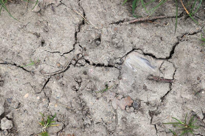 Vue haute étroite sur les champs agricoles avec les voies sèches de la terre et de tracteur image stock