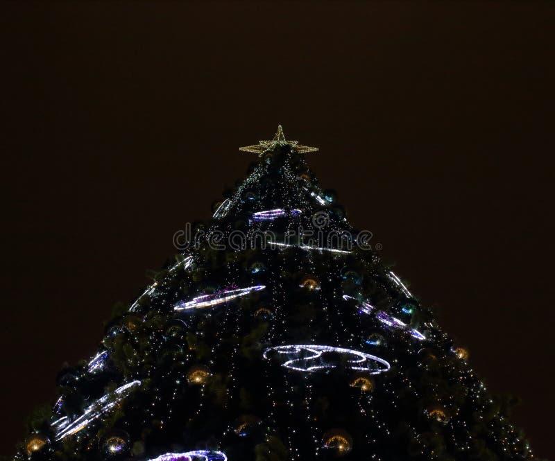 Vue inférieure de grand arbre de Noël la nuit image stock