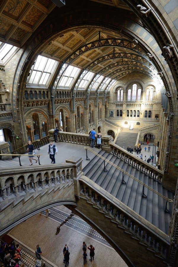 Vue intérieure de musée d'histoire naturelle photos stock