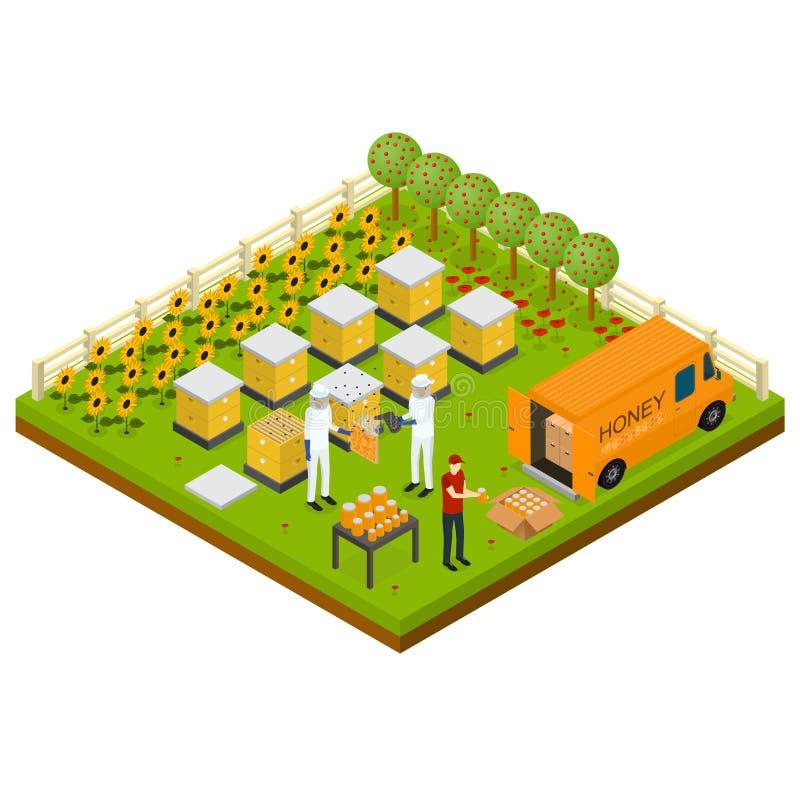 Vue isométrique de concept isométrique de ferme de rucher de l'apiculture Vecteur illustration de vecteur