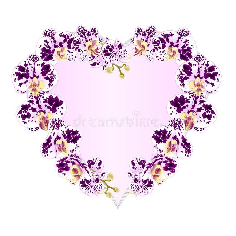 Vue l'illustration botanique en forme de coeur f de vecteur de vintage de plantes tropicales de fleurs d'orchidées pourpre repéré illustration stock