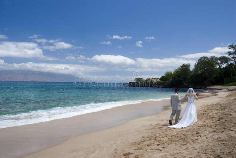 Vue large exotique de mariage de plage images libres de droits