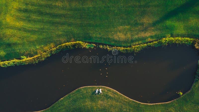 Vue le tir d'un bourdon un couple tenant des mains se trouvant sur l'herbe image libre de droits