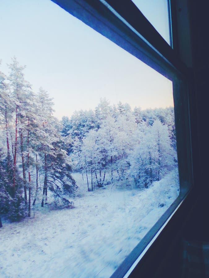 Vue magique d'hiver de train photographie stock libre de droits