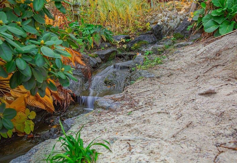 Vue magnifique de chemin/de ruisseau de l'eau dans paysages de nature de forêt d'automne de beaux image stock