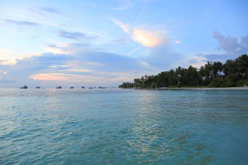 Vue magnifique de l'Océan Indien, Maldives Ligne blanche de côte de sable avec les arbres verts, l'eau d'océan de turquoise et le photographie stock