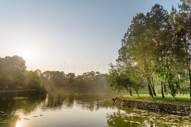 Vue merveilleuse de lac scénique en parc le jour d'été photos libres de droits