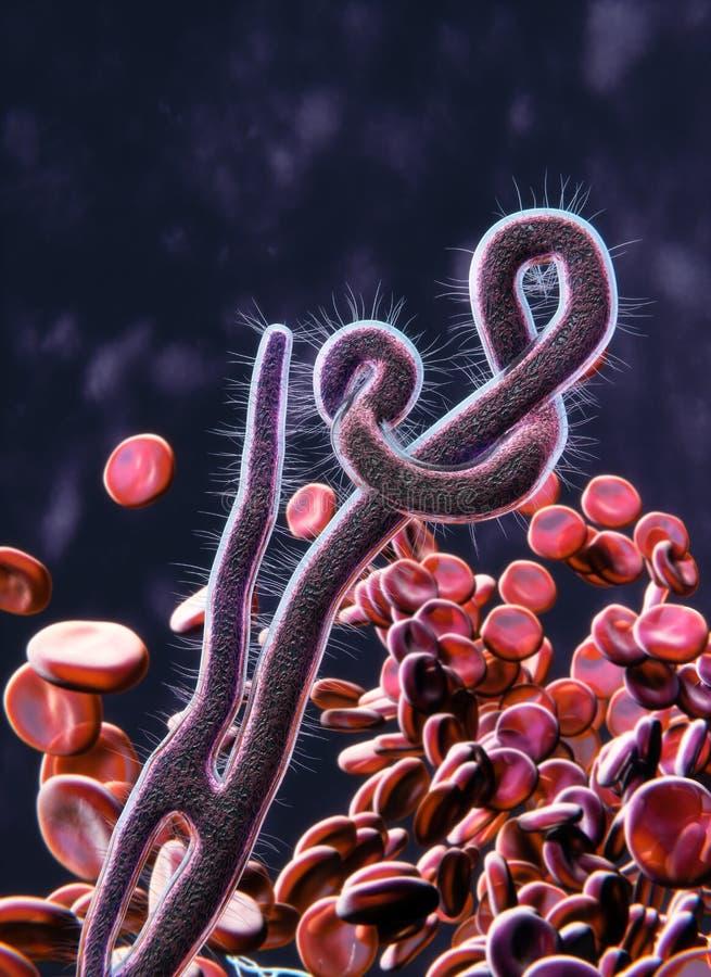 Vue microscopique de virus Ebola illustration stock