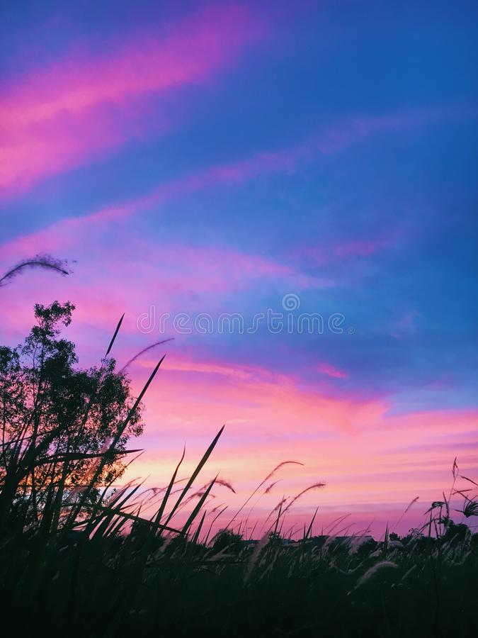Vue naturelle de coucher du soleil image libre de droits