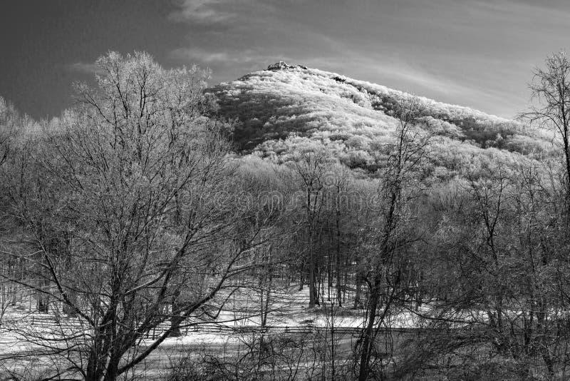 Vue noire et blanche d'hiver de montagne supérieure pointue photos stock