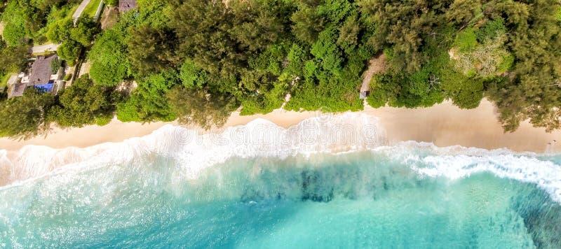 Vue panoramique aérienne de belle plage tropicale avec des arbres photos stock