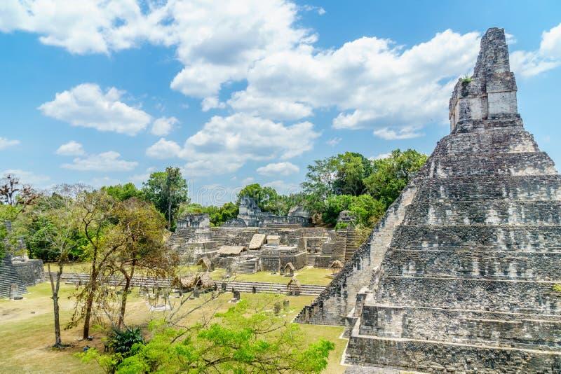 Vue panoramique au-dessus des pyramides et des temples de Maya en parc national Tikal au Guatemala photos libres de droits