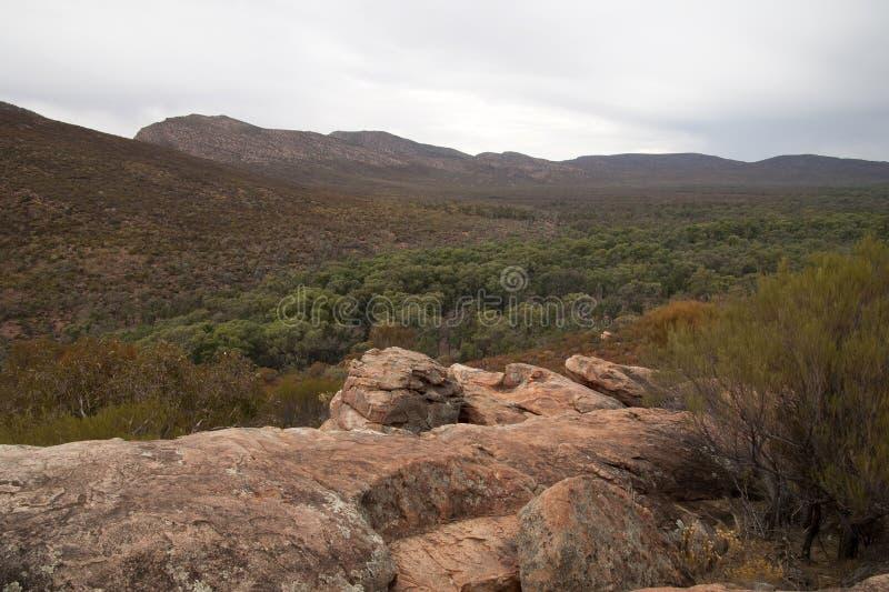 Vue panoramique avec les nombreuses couleurs du buisson australien de l'affleurement rocheux dans le premier plan images libres de droits
