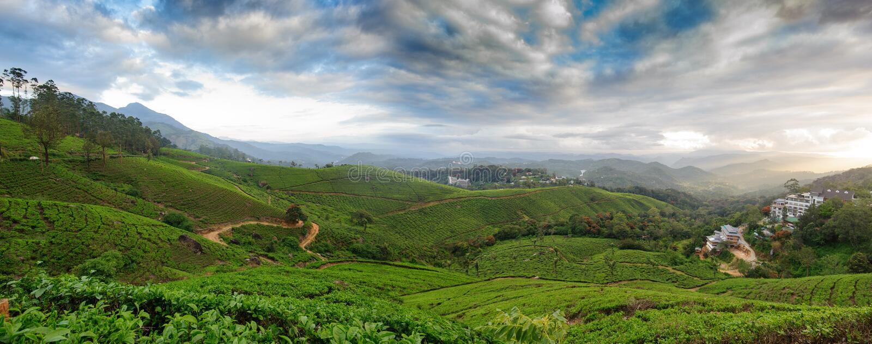 Vue panoramique dans Munnar dans Ghats occidental, Kerala images libres de droits