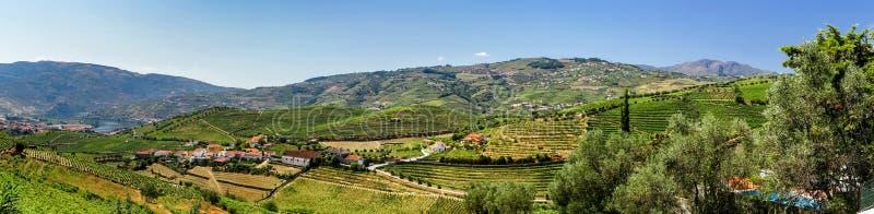 Vue panoramique de collines de Douro photographie stock