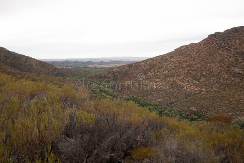Vue panoramique de crique et d'espace de Wilpena image stock