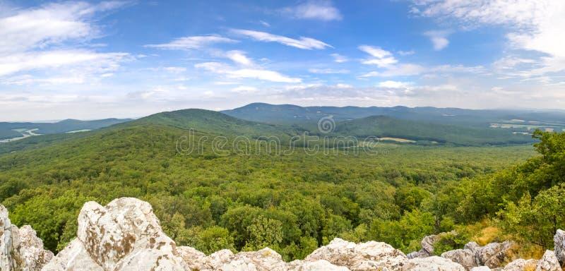 Vue panoramique de forêts à feuilles caduques photographie stock