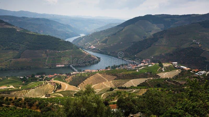 Vue panoramique de la vallée de Douro avec des vignobles dans les collines, Porto photographie stock libre de droits