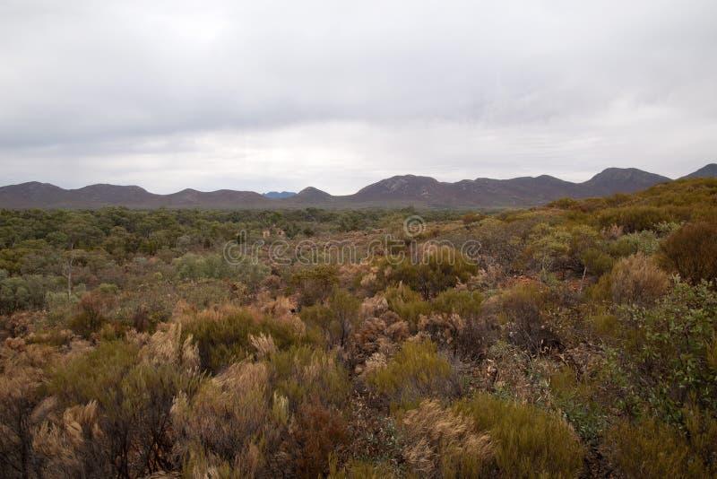 Vue panoramique de livre avec des couleurs d'automne dans le buisson photographie stock libre de droits