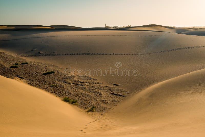 Vue panoramique de paysage des dunes de désert de sable de maspalomas avec la ville et des montagnes à l'arrière-plan un jour ens photos libres de droits