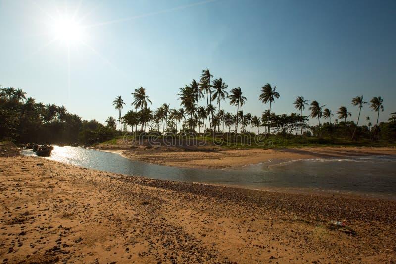 Vue panoramique de plage tropicale avec des palmiers de noix de coco Koh Sa photos stock