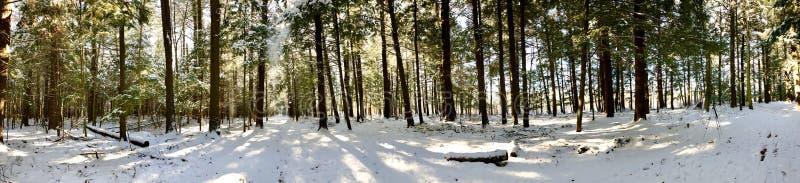 Vue panoramique de secteur commémoratif blanc de conservation photo libre de droits