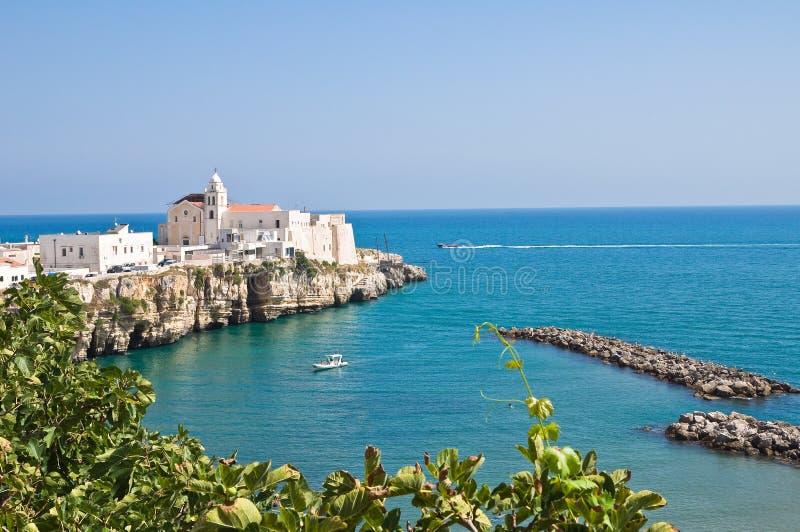 Vue panoramique de Vieste. La Puglia. L'Italie. images stock