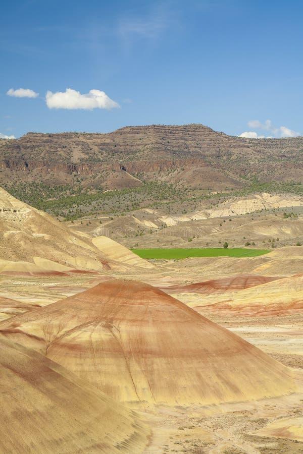 Vue panoramique des collines Painted, Orégon photos libres de droits