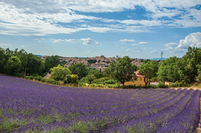 Vue panoramique des gisements de lavande et de la ville de Valensole images libres de droits
