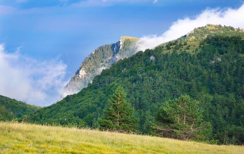 Vue panoramique des montagnes d'été dans le jour ensoleillé photographie stock libre de droits