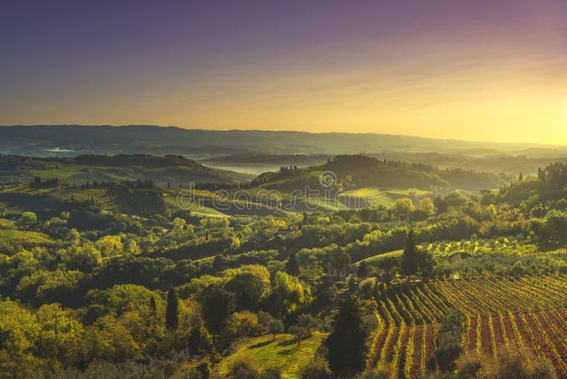 Vue panoramique des vignobles de campagne et de chianti de San Gimignano La Toscane, Italie photo stock