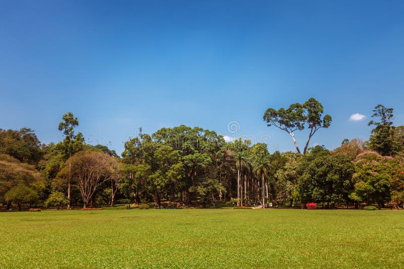 Vue panoramique du Roi botanique royal Gardens, Peradeniya, Sri Lanka photos libres de droits