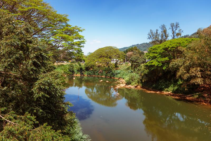 Vue panoramique du Roi botanique royal Gardens, Peradeniya, Sri Lanka Allée, lac et rivière photographie stock