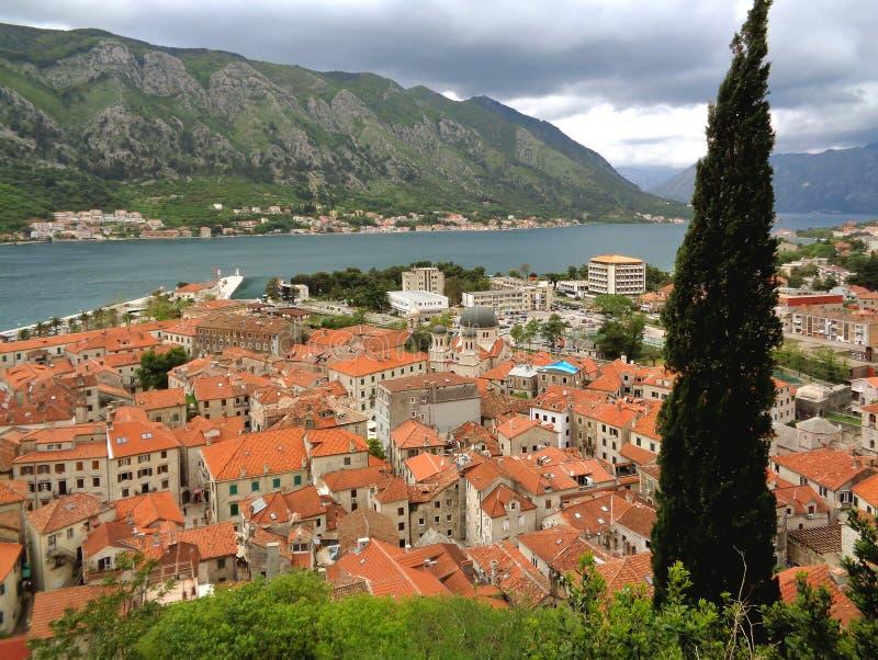 Vue panoramique impressionnante de vieille ville de Kotor le long du rivage de la baie de Kotor, Monténégro photos stock