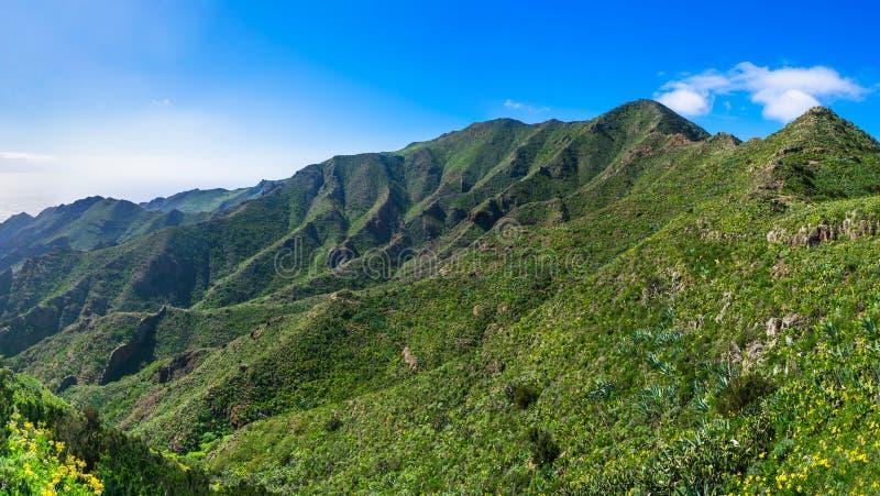 Vue panoramique large des montagnes de Macizo de Teno dans Ténérife, image libre de droits
