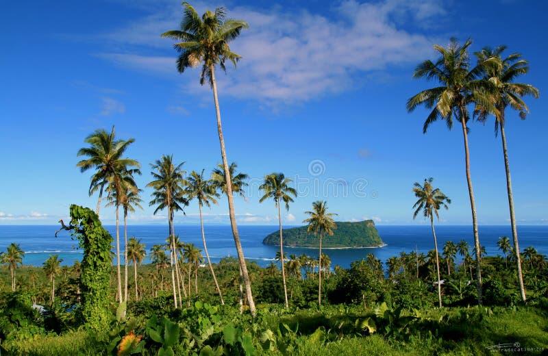 Vue panoramique par les palmiers et la végétation indigène à l'horizon de l'océan pacifique avec l'île tropicale à distance images libres de droits