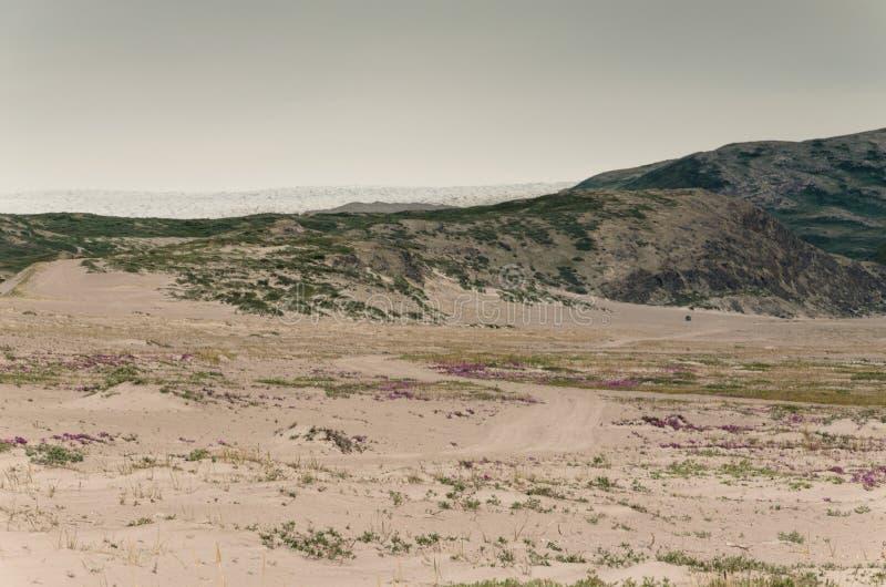 Vue par la vallée de désert de Sandflugtdalen vers les montagnes et la calotte glaciaire Greenlandic, Groenland photos libres de droits