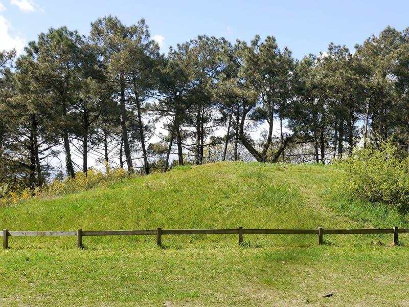 Vue partielle d'un monticule d'enterrement en Brittany France, couverte d'herbe, la culture mégalithique néolithique photographie stock