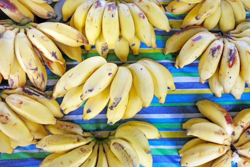 Vue plate de configuration du groupe de bananes à vendre sur le marché C de Rarotonga images libres de droits