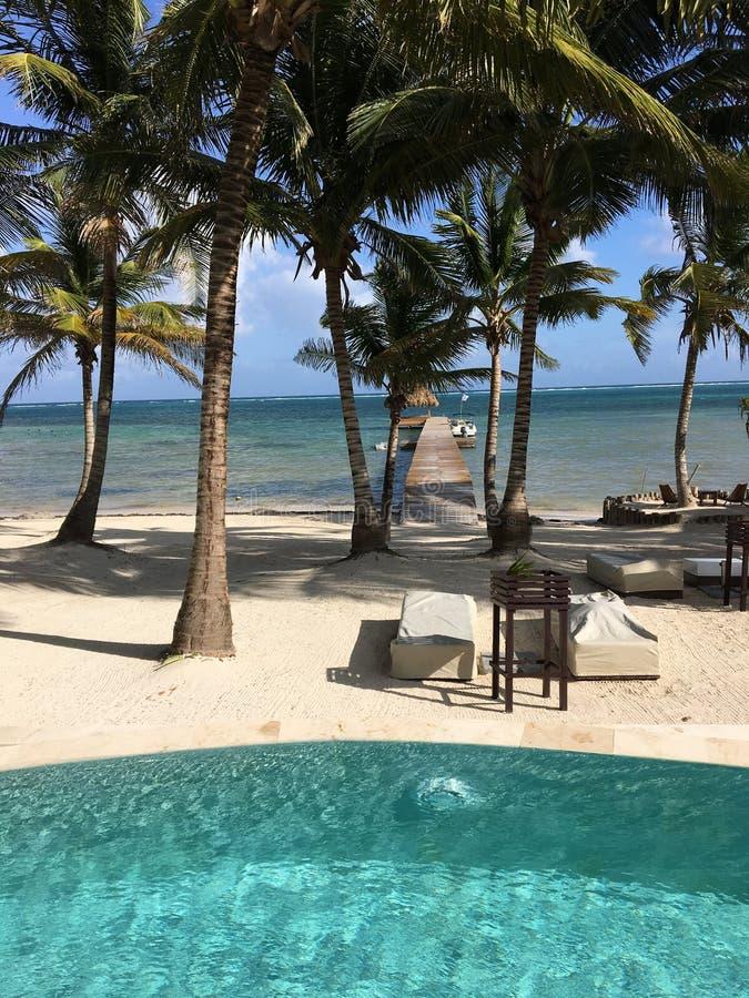 Vue renversante de station de vacances sur l'ambre gris Caye Belize image stock
