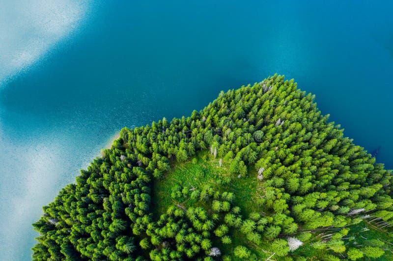 Vue a?rienne d'un lac de for?t Vue aérienne de lac bleu et de forêts vertes un jour ensoleillé d'été Photographie de bourdon For? images libres de droits