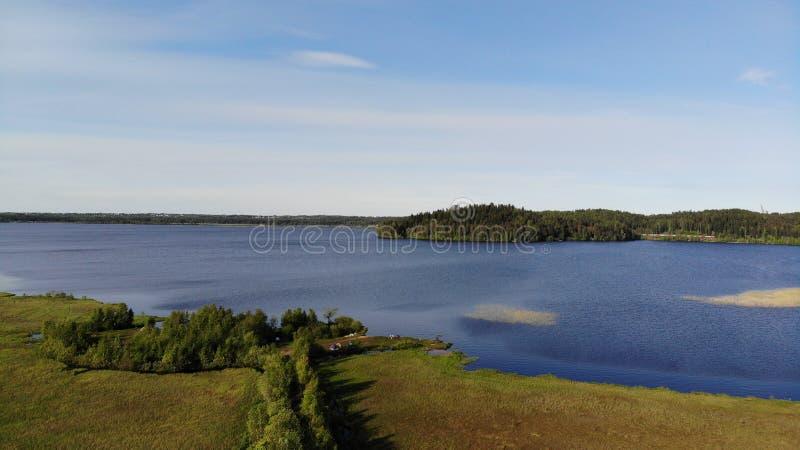 Vue a?rienne des lacs bleus et des for?ts vertes un jour ensoleill? d'?t? dans Kavgolovo, Toksovo Rivage de r?servoir d'eau avec  photos stock
