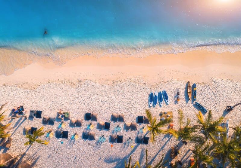 Vue a?rienne des parapluies, paumes sur la plage sablonneuse de la mer bleue photos libres de droits