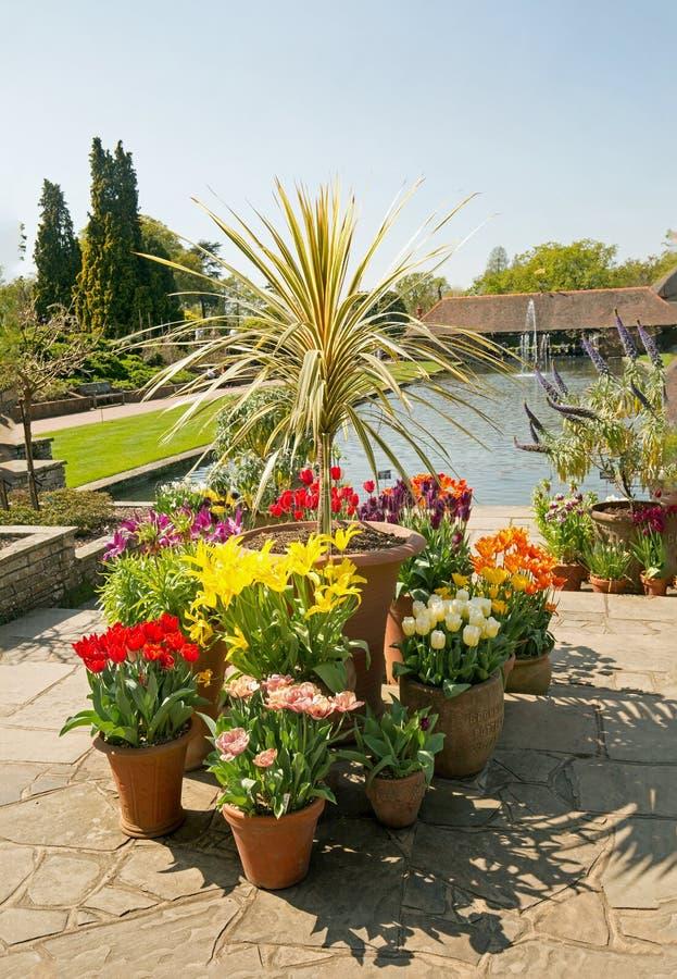 Vue scénique d'un affichage des tulipes de ressort avec un petit lac et une fontaine d'eau à l'arrière-plan images stock